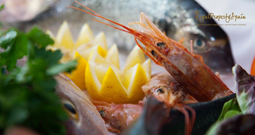 Испанская кухня - морепродукты Испании