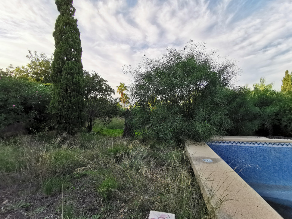 Plot with old house in Albir